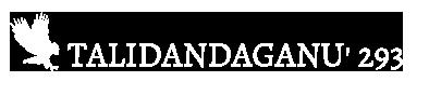 Talidandaganu' 293 Logo